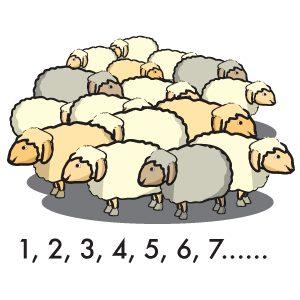 Contare le pecore - www.scuoladirespiro.org