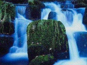 Segui il flusso - www.scuoladirespiro.org