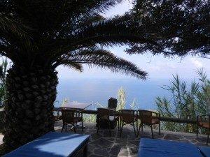 Ischia sotto gli olivi - www.scuoladirespiro.org